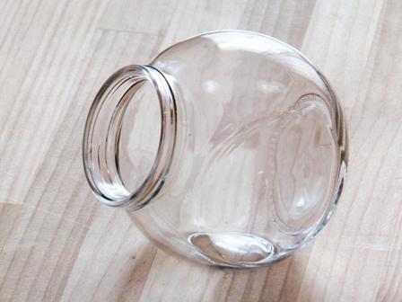 エアプランツのテラリウム